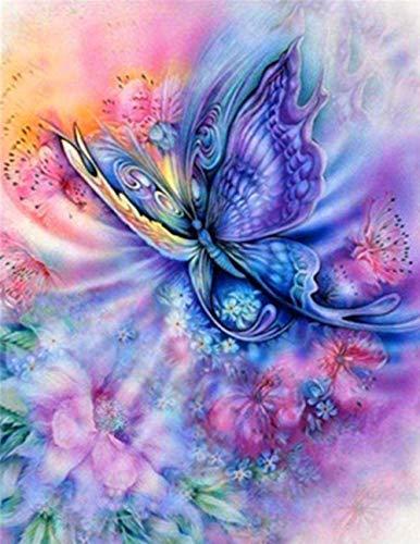HAON Pintura de Mariposas de Colores del Arco Iris por Kits de números Pintura Digital de Bricolaje para Colorear sobre Lienzo Pintura al óleo por ti Mismo Hecho a Mano 40x50cm sin Marco