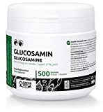 GreenPet - Glucosamine en poudre, 500 g pour chiens et chevaux, nouveau soutien articulaire, sans ajout de sel ou de sucre