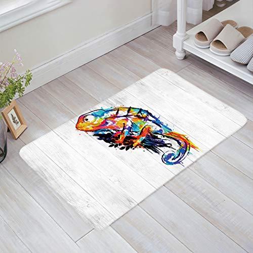 Animal Sponge Indoor Doormat Decor Carpet for Entrance Living Room Bedroom Kitchen, Doodle Chameleon on Wooden Board, Rubber Back Non Slip Welcome Mat Entry Rug 16'x24'