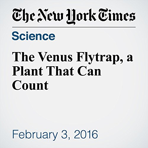 The Venus Flytrap, a Plant That Can Count audiobook cover art