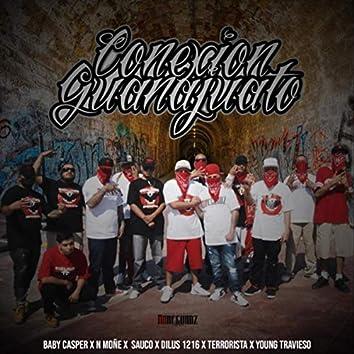 Conexion Guanajuato (feat. N Moñe, Sauco, Dilus 1216, Terrorista & Young Travieso)