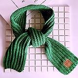 TD Frauen-Schals Wraps Kinderschal Warme Mädchen Verdickte Kleine Koreanische Version Hohe Qualität (Color : Green, Size : 100~130cm)