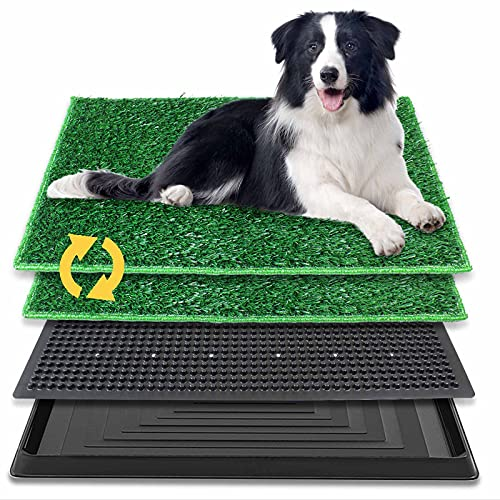 BRIAN & DANY 30x20inch Dog Puppy Pet Potty Pad with Artificial Grass, Home Bathroom Dogs Training Toilet Pad