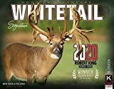 2020 Whitetail Deer of Big Bucks Wall Calendar Free 2-3 Day Shipping by The KING Company/Monster Calendars