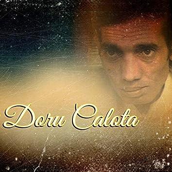 Doru Calota