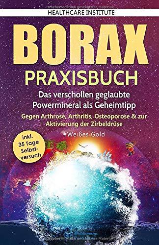 Borax: Praxisbuch - Das verschollen...