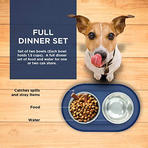 Bonza Doppel Hundenapf Hundefutterstation, Edelstahl-Wasser-und Futternäpfe mit Spill und rutschfeste Silikon-Basis. Premium Quality Feeder Lösung für kleine Hunde und Katzen (Marineblau) - 3