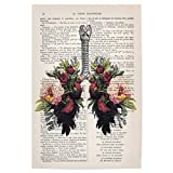 artboxONE Poster 30x20 cm Anatomie Floral Flower Lungs 01