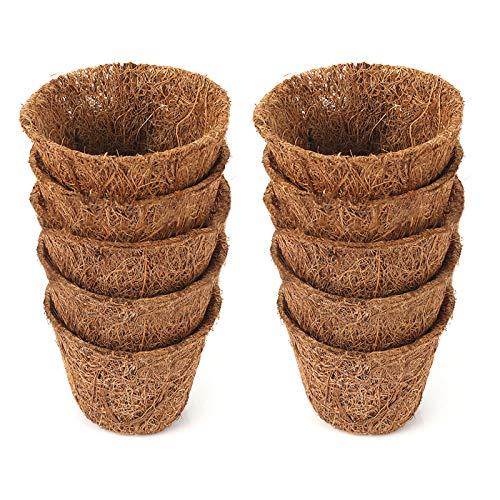 MOOVGTP 10 paquetes de macetas de coco para iniciar semillas, de fibra de coco de 2,6 pulgadas, kit...