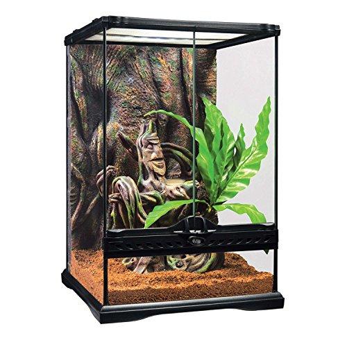 EXO TERRA Kit Terrario Cresta Gecko Pequeño, 30 x 30