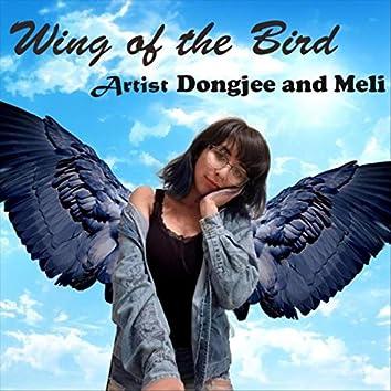 Wing of the Bird