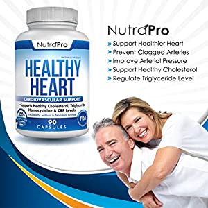 Healthy Heart - Heart Health Supplements. Artery Cleanse & Protect. Supports Cholesterol and Triglyceride Balancing. GMP Certified #4