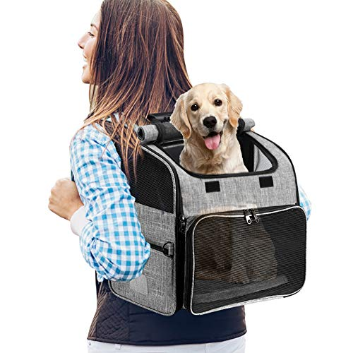 YOUTHINK Hunde Rucksäcke, Haustier Rucksäcke mit Mesh für kleine Hunde Katzen Welpen, Comfort Katzen Rucksäcke Tasche Airline genehmigt für Wandern Reisen Camping im Freien