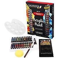 40-Piece Salvador Acrylic Paint Set with Premium Brushes