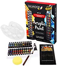 Salvador Acrylic 40 Piece Paint Set - 24 Colors (12ml/tube), Paint Kit with Premium Paint Brushes, Mixing Knife, Paint Pallet and Sponge, Professional Painting Set Arts Crafts Supplies for Adults Kids