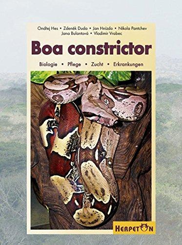 Boa constrictor: Biologie, Pflege, Zucht, Erkrankungen
