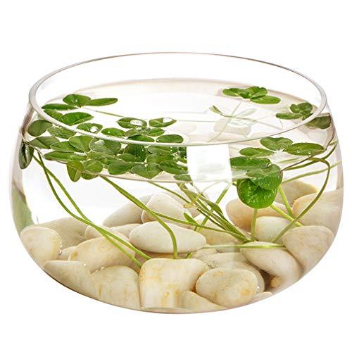 Hydrocultuur plantenpot Helderglazen ronde viskom Stijl bloemenvaas Woonkamer ronde aquarium verjaardagscadeau