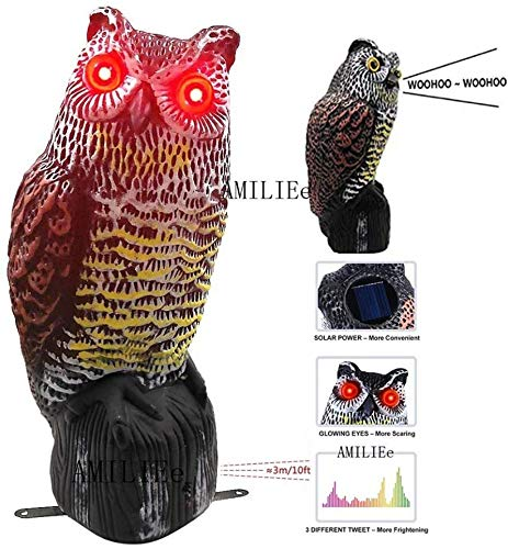 AMILIEe Owl Decoy Flashing Eyes Frightening Sound to Scare Birds, Solar Powered Scarecrow Owl Decoy Statue Realistic Scary Sounds & Shadow Outdoor Pest Bird Deterrent for Patio Yard Garden Protector