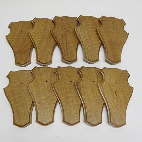 GTK - Gewei & Trofee kroomhout 10 stuks Trofeeschild REH stomp (groot voor hele neus), medium bruin