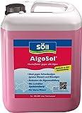 Söll 10345 AlgoSol - Hocheffektiv gegen alle Algen - 5 l