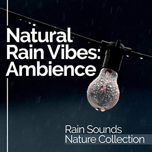 Gazebo Raindrops