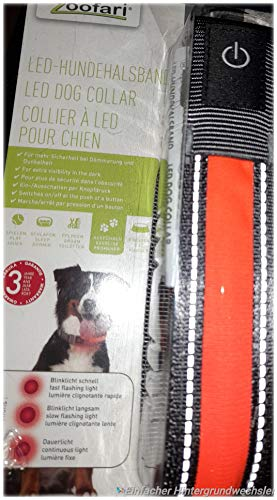 Collare LED per cani, collare per cani, guinzaglio
