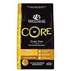 Wellness Core Grain Free Puppy Food for Labs