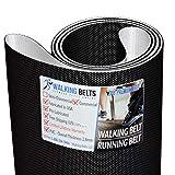 WALKINGBELTS Walking Belts LLC - Stairmaster Quinton ClubTrack Serial#: Beginning 377 Treadmill Walking Belt 2ply Premium + Free 1oz Lube