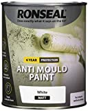 RONSEAL AMPWM750 Anti Mould Paint White Matt 750ml