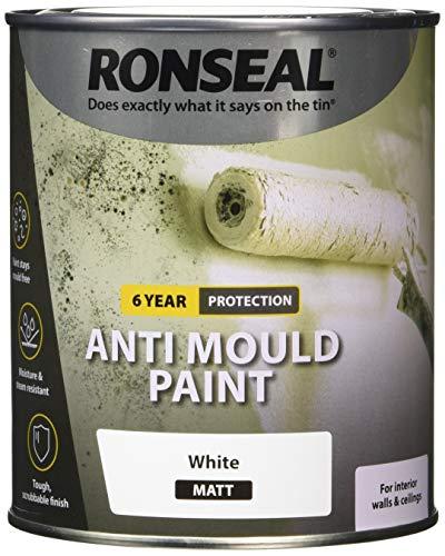 Ronseal AMPWM750 Anti Mould Paint White Matt 750ml