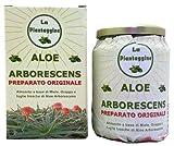 Áloe Arborescens como receta de padrino romano Zago producto de hojas frescas la plantaña