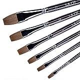 Set de 6 piezas de pincel plano para artista con mango de madera para acuarela, acrílico y pintura al óleo