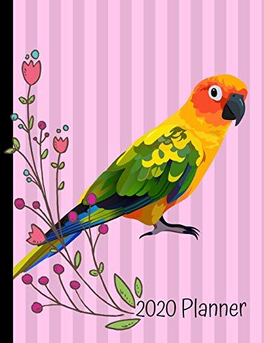 2020 Planner: Sun Conure Bird Pink 2020 Weekly Planner Organizer Dated Calendar And ToDo List Tracker Notebook
