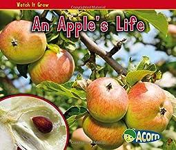 An Apple's Life (Watch It Grow)