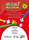 Zoom IMG-2 maxi multicolor