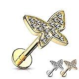 Treuheld Piercing Labret a forma di farfalla, in 3 colori e 2 misure [2] – oro – 1,2 mm x 6 mm