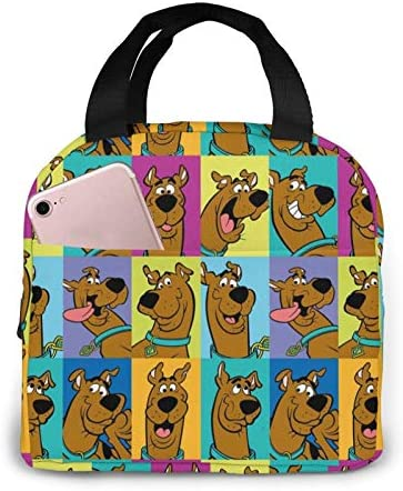 Insulated Lunch Bags Sc oo by Do o Tote Bag Cooler Bag Water resistant Thermal Lunch Box For product image