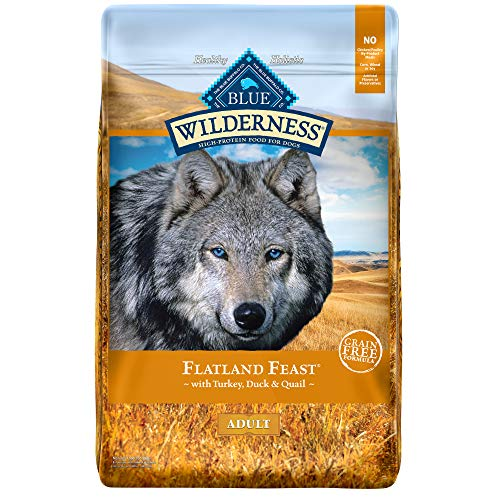 Blue Buffalo Wilderness Flatland Feast High Protein, Natural Dry Dog Food with Turkey, Quail & Duck 22-lb