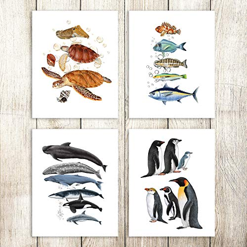 JIMHOMY Sea Turtle Canvas Prints Animal Wall Art for Kids Marine Wall Prints Fish Posters - Penguin Squid Conch Wall Decor for Bathroom Living Room Nursery Decor Set of 4 UNFRAMED 8x10in