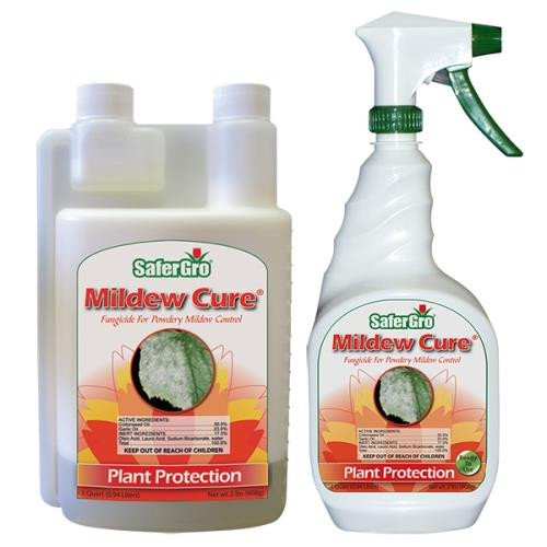 SaferGro Mildew Cure Quart 743600