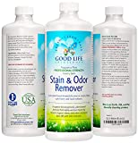 Stain Remover And Odor Eliminator - The Best Eco-Friendly, Professional-Strength, Toddler, Dog And Cat Urine Cleaner- A Safer Plant-Based, Enzyme Formula For Carpet, Fabric, Upholstery & Hard Floors.