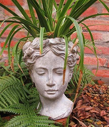 - -  Unbekannt Garten