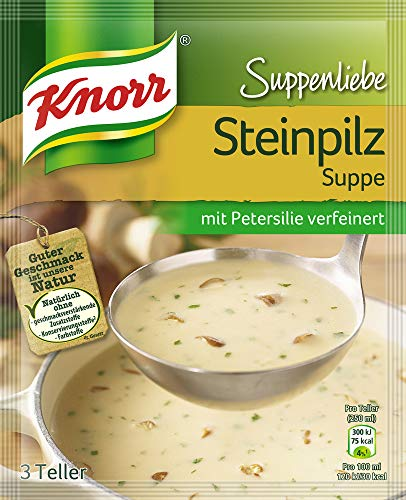 Knorr Suppenliebe Steinpilz Suppe, 1 x 3 Teller (1 x 750 ml)