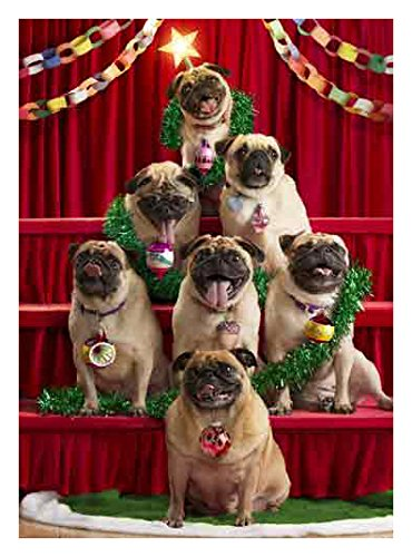 Avanti 10-Count Christmas Cards, 7 Pugs-a-Posing