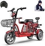 Vélo de neige électrique, 3 roues vélo électrique 500W vélo électrique for adultes 48V 11AH 12 En Scooter électrique avec serrure électrique rapide Chargeur de batterie avec casque et gants for Hat Sc