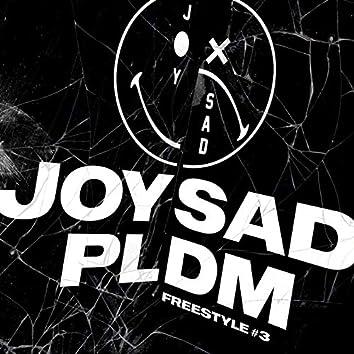 PLDM #3