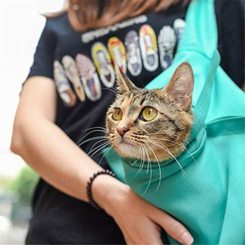 Casual Security Pack Crossbody Phone Pouch With Shoulder Strap Wallet Handbag Blue Cat Animals