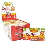 Xylitol Goma de mascar fruta, chicles dentales, 100% sin azúcar, caja de 24 blisters (12 piezas por blister), sin aspartamo, vegetariana, amigable con los dientes