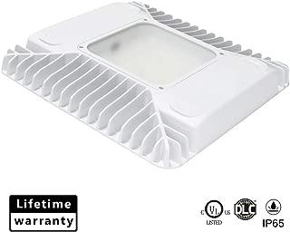Best aluminum light fixture Reviews