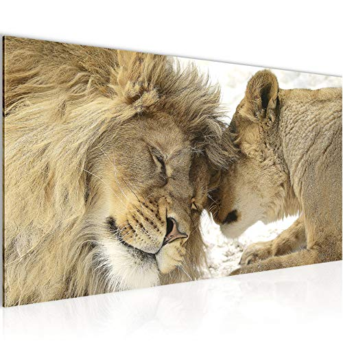 Bilder Löwen Afrika Wandbild 100 x 40 cm Vlies - Leinwand Bild XXL Format Wandbilder Wohnung Deko Kunstdrucke - MADE IN GERMANY - Fertig zum Aufhängen 002112a